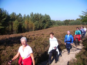 Nordic Walking Elst